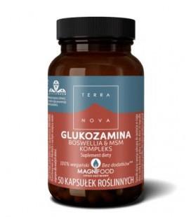 TERRANOVA Glukozamina Boswellia i MSM Kompleks 50