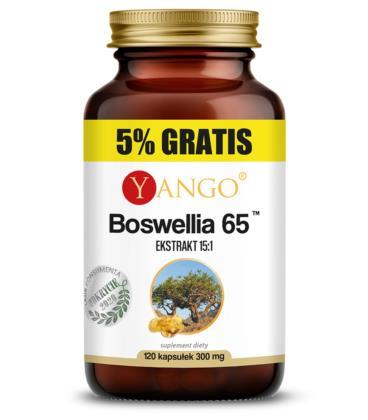 YANGO Boswellia 65 120 kapsułek