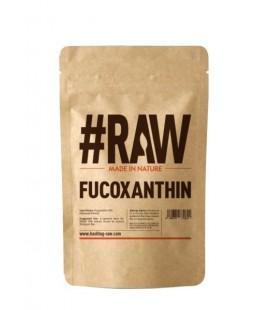 RAW Fucoxanthin 100g