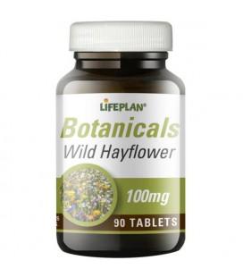 Lifeplan Wild Hayflower 90tab