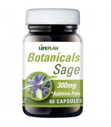 Lifeplan Sage 300mg 60kaps
