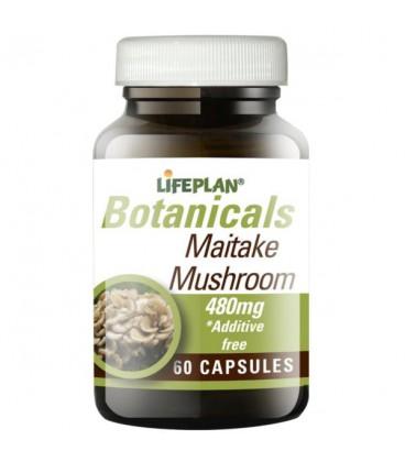 Lifeplan Maitake Mushroom 480mg 60kaps