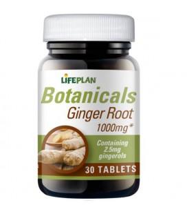 Lifeplan Ginger Extract 50mg 30tab
