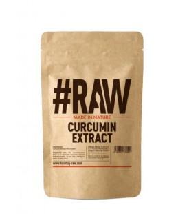 RAW Curcumin 95% Extract 50g